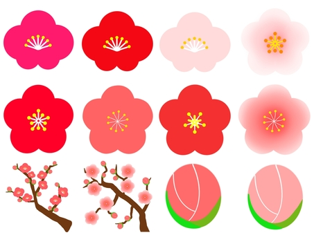 Plum flower set