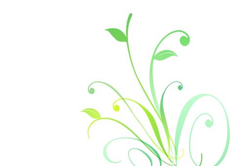 Fresh green material 32