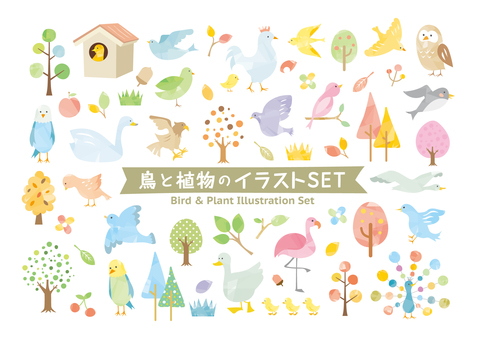 Bird and plant watercolor style set