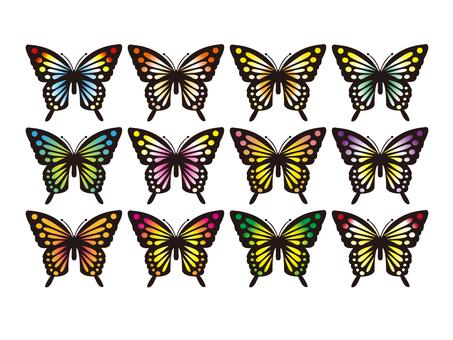 蝶 セット