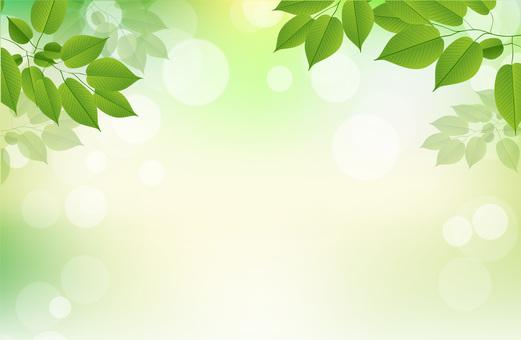 Leaf image texture background
