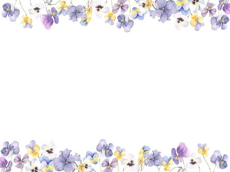 Flower frame 217 - Pansies and viola decorative frames