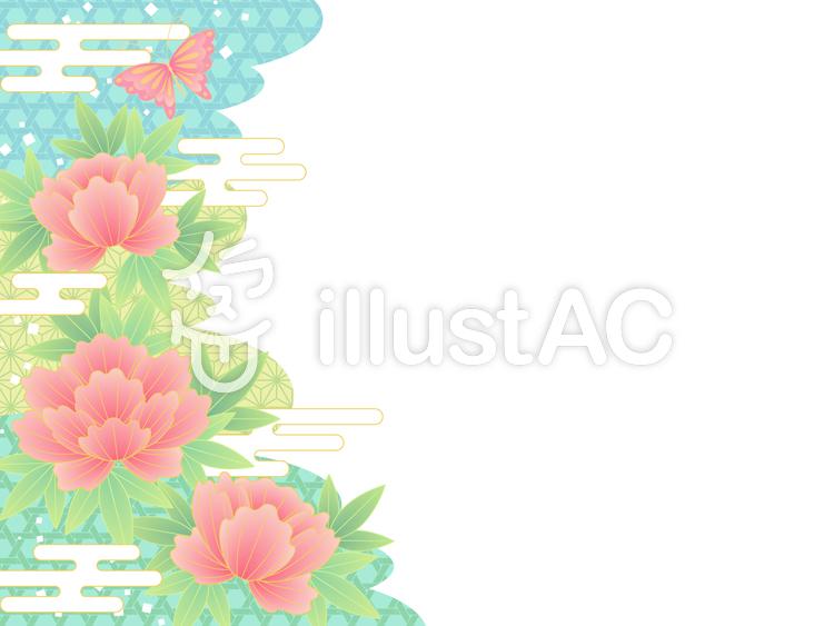 牡丹と蝶のイラスト