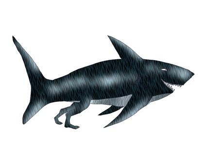 New kind of shark