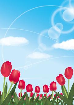 Tulip red vertical
