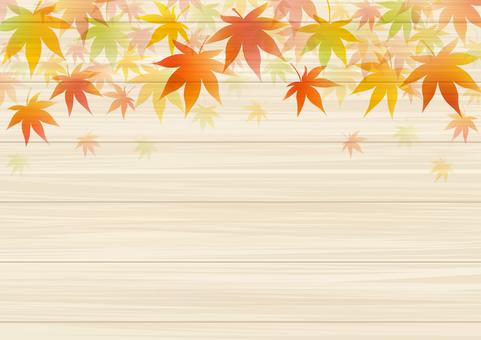 Autumn 223