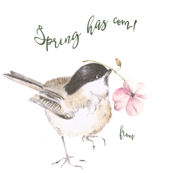 A little bird card, Spring has come!