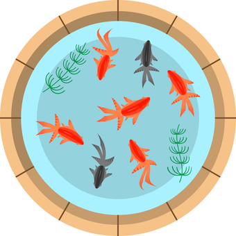 Goldfish swimming in a cage