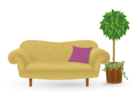 Sofa and ornamental plants