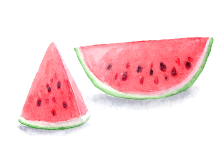 Watermelon drawing with transparent watercolor