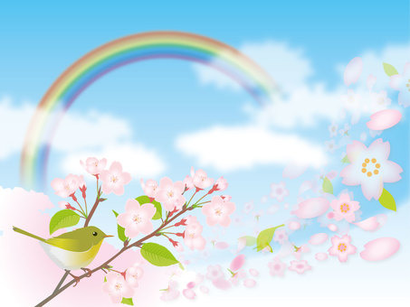 Cherry blossoms and rainbows