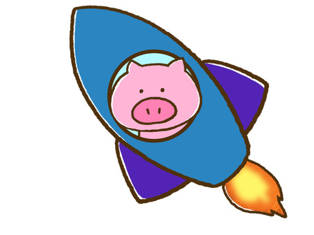Pigs and rockets