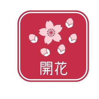 Cherry tree · Flowering mark