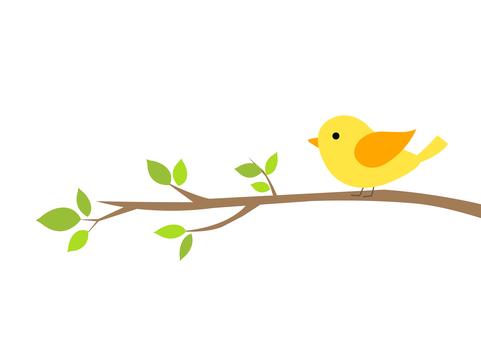 Mr. 小鳥 4