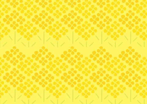 유채 꽃 패턴