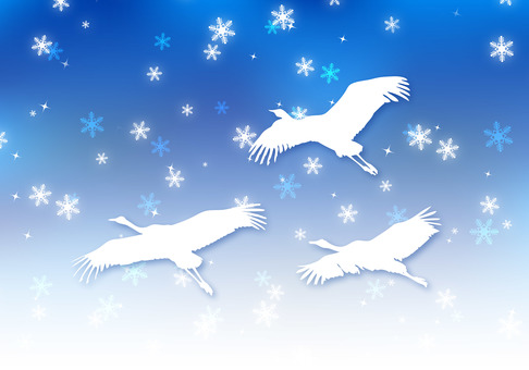 Crane dancing in the night sky of winter