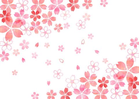 Sakura _ diagonally up and down _ pastel background 1830