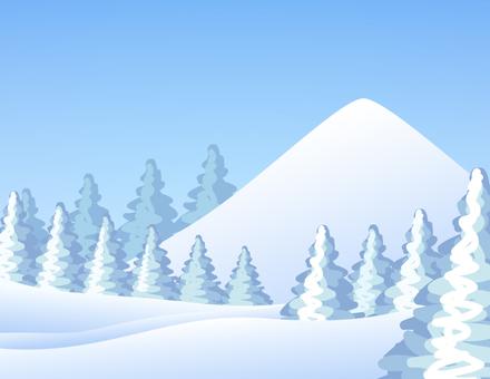 설산과 삼나무 _ 맑음