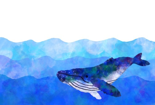 Whale sea background