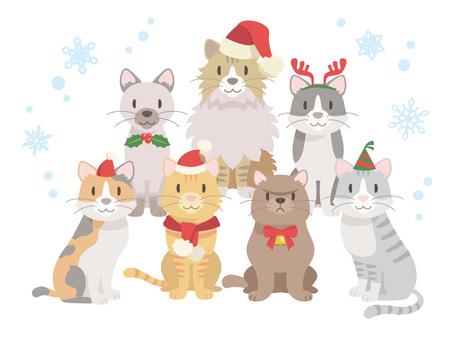 猫集合_クリスマス