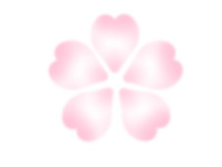 Cherry blossoms (white peach)