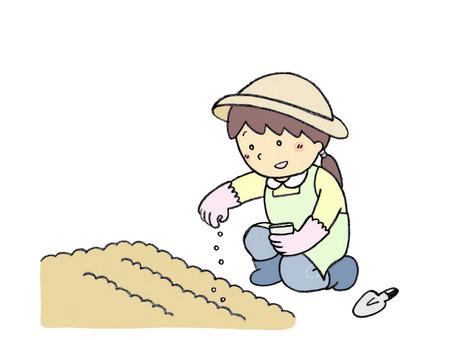 Gardening (seedling)