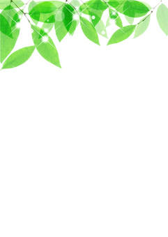 New green background _ vertical