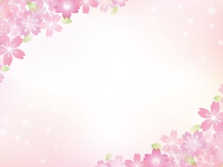 Cherry blossom image 031