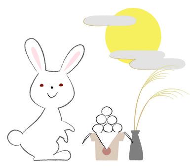 토끼 달맞이