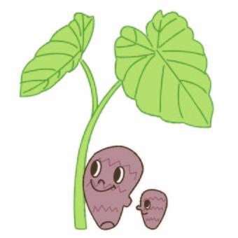 Taro Character