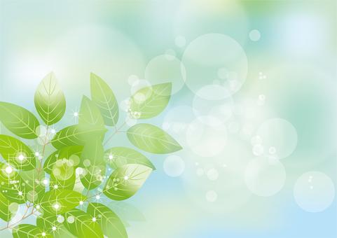 Glittering leaves & sky 32