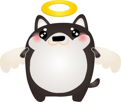 Black Shiba Angel