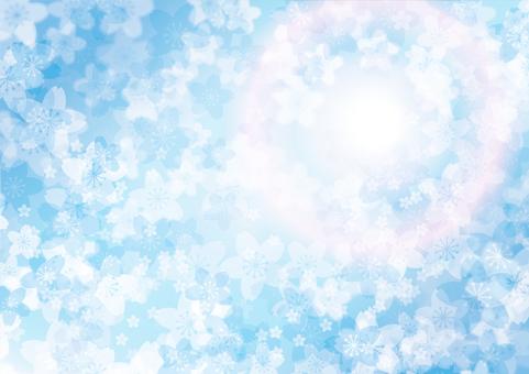 벚꽃 블루 햇살