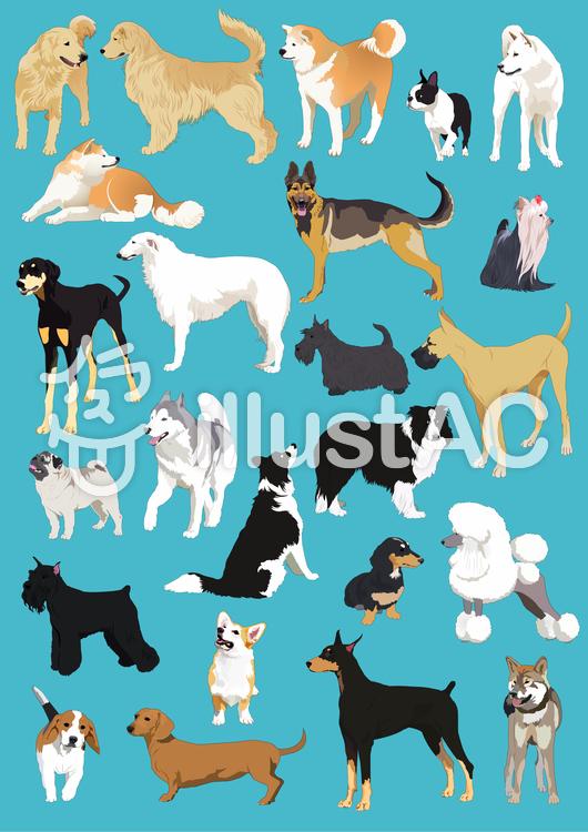 犬イラスト1のイラスト