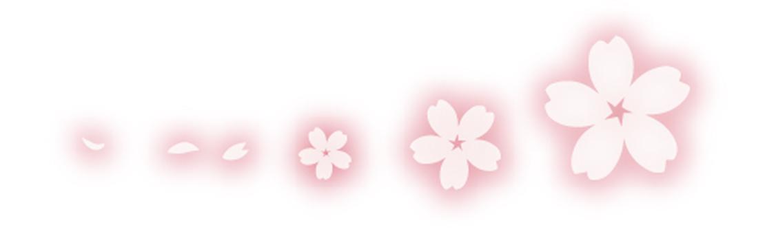 Sakura - Fluffy pink