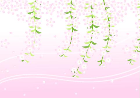 Weeping Sakura Horizontal