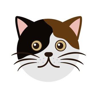 고양이 얼굴