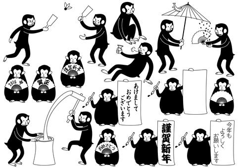 Various monkey
