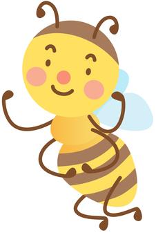 Hachi: Cheerful