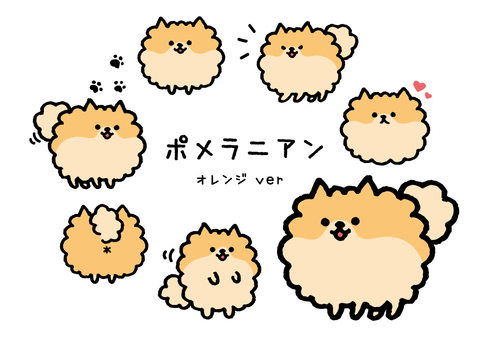 Loose dog Pomeranian Summary 2