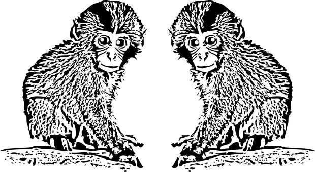 무료 일러스트 무료 소재 동물 귀여운 원숭이 원숭이